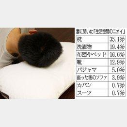 「洗える枕」が各種売られている(C)日刊ゲンダイ