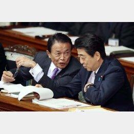 選挙のためなら何でもアリ(C)日刊ゲンダイ