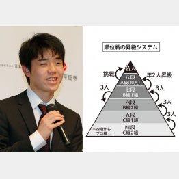 藤井聡太七段にさらなる追い風(C)日刊ゲンダイ