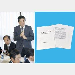国民生活など眼中にない安倍首相(右は、老後に2千万円の蓄えが必要と試算した金融庁金融審議会の報告書)/(C)共同通信社