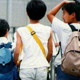 中学受験とお金<下>成功の秘訣は外遊びと毎日のドリル習慣