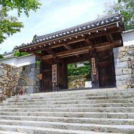 祇園で強制わいせつ 三千院僧侶の父は本紙記者に「アホ」