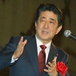 日本は三流、人治国家に転落 安倍政権支持者こそ「反日」