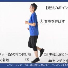1カ月で10kg減も「スロージョギング」ならひざ痛知らず