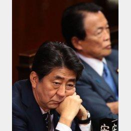 消費増税は今の景気悪化をダメ押しするだけ(C)日刊ゲンダイ
