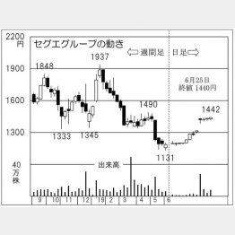 セグエグループ(C)日刊ゲンダイ
