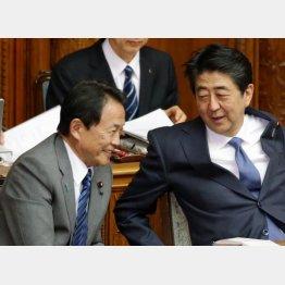 重要政策に多くの有権者が「ノー」(C)日刊ゲンダイ
