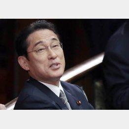 岸田政調会長(C)日刊ゲンダイ