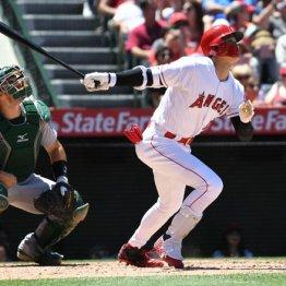 エ軍大谷298日ぶり2発 本塁打量産の鍵は球審との良好関係