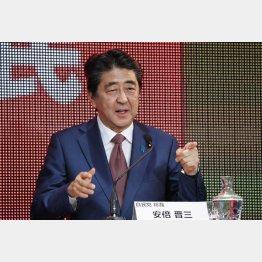 安倍首相は「憲法のあるべき姿」の重視を述べたが…(C)日刊ゲンダイ