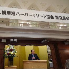 設立集会の冒頭で挨拶をしたYHRの藤木幸夫会長(C)日刊ゲンダイ