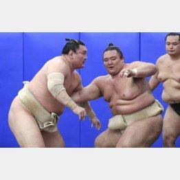 朝乃山(右)をコテンパン(C)共同通信社