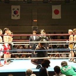 国内では6年ぶり プロボクシング「日韓対抗戦」観戦ルポ