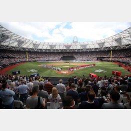 まさかのロンドンで野球(C)ロイター