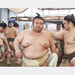 44日ぶりに相撲を取った大関(C)共同通信社