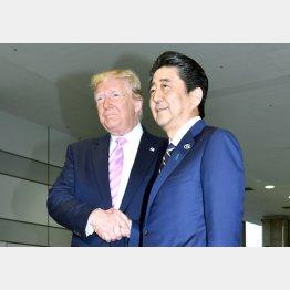 似た者同士の安倍首相とトランプ米大統領(C)JMPA/稲葉訓也