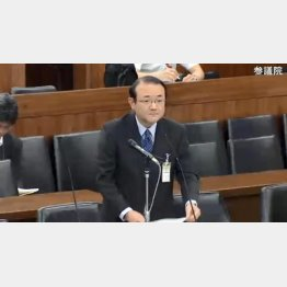 丸山洋司官房審議官(国会中継より)