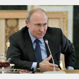 プーチン大統領にいいようにあしらわれている(C)Sputnik/ロイター