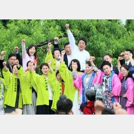 公示日は「福島あづま果樹園」で第一声(C)日刊ゲンダイ