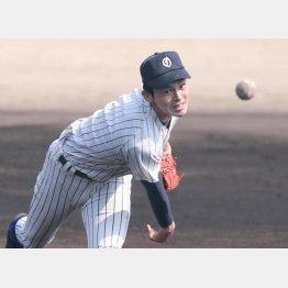 15日に初戦を迎える佐々木(C)日刊ゲンダイ