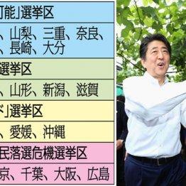 安倍自民に落とし穴 野党候補が急追する逆転可能14選挙区