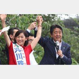 東京選挙区は、ぶっちぎりの丸川珠代候補のうらで武見敬三候補が最下位争い(C)日刊ゲンダイ
