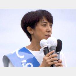 地方の声を伝える寺田静候補(C)日刊ゲンダイ