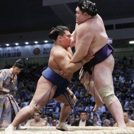 照強翔輝は根性の人 学校サボっても相撲道場には通い続け