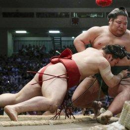炎鵬は今や大相撲の広告塔 ファン急増し小柄な志願者増加