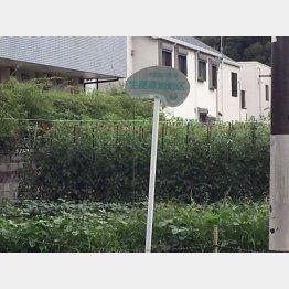 生産緑地が不動産市場に与えるインパクトは?(C)日刊ゲンダイ