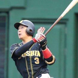 勝てない阪神…4番大山が4安打2打点でも6連敗で4位転落