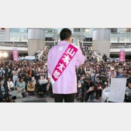 2議席を獲得した「れいわ新選組」(C)日刊ゲンダイ