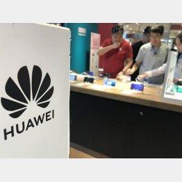 ハーウェイは北朝鮮の携帯電話事業に協力…(C)共同通信社
