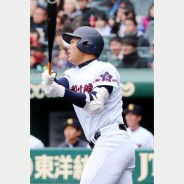 山梨学院の野村は高校通算53本塁打(C)日刊ゲンダイ
