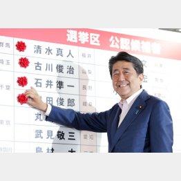 笑顔で花をつける安倍晋三首相だが…(C)日刊ゲンダイ