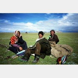 チベット自治区の草原で寛ぐ遊牧民と家族と(提供写真)