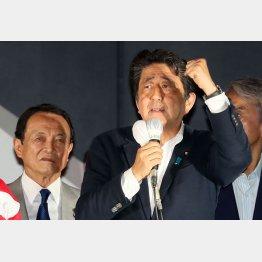 強調したのは「政治の安定」(安倍首相)/(C)日刊ゲンダイ