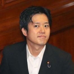 丸山穂高衆院議員(C)日刊ゲンダイ