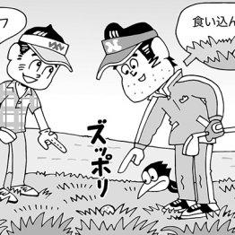 (イラスト・小山混)
