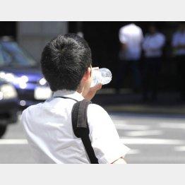 水とスポーツ飲料どっちを飲むべきか(C)日刊ゲンダイ