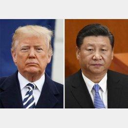 トランプ米大統領と習近平国家主席(C)ロイター=共同