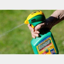 欧州などではグリホサート剤を含んでいる除草剤は使用禁止や規制強化(C)ロイター