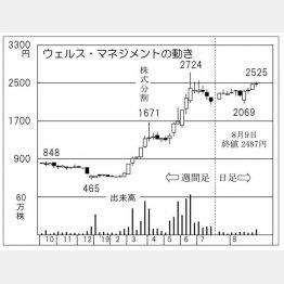 ウェルス・マネジメント(C)日刊ゲンダイ