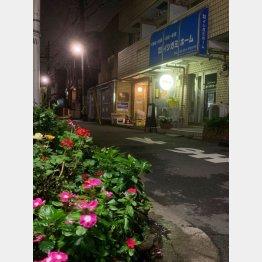 路地にポツンと明かりがともる(C)日刊ゲンダイ