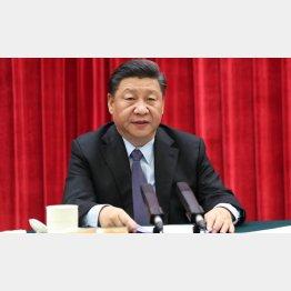 それが米中経済戦争、どう出る?(中国の習近平国家主席) (C)新華社/共同通信イメージズ