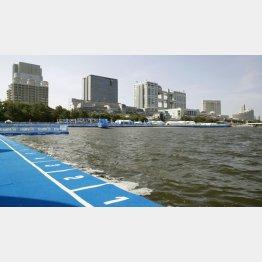 水質悪化でスイムが中止になったパラトライアスロンW杯のコース(東京・お台場海浜公園)/(C)共同通信社