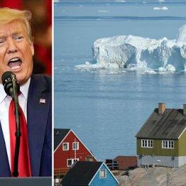 トランプ本気 グリーンランド1兆5000億円買収計画の実現性