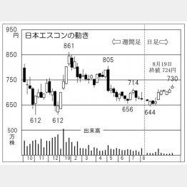 日本エスコン(C)日刊ゲンダイ