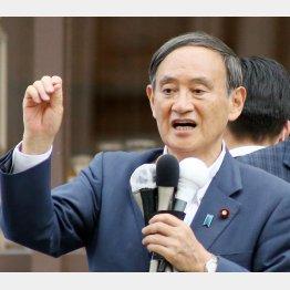 長官案件(C)日刊ゲンダイ