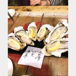 「地下の粋」で冬場は真牡蠣、夏は岩牡蠣をメインに…(提供写真)